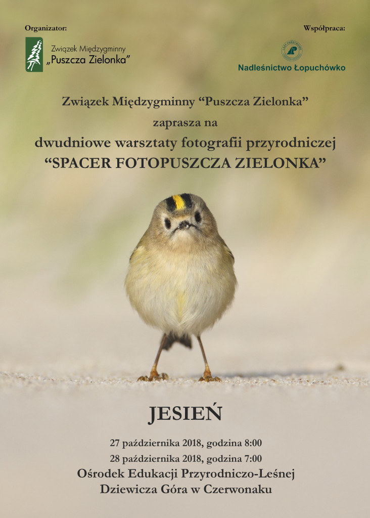 jesien plakat
