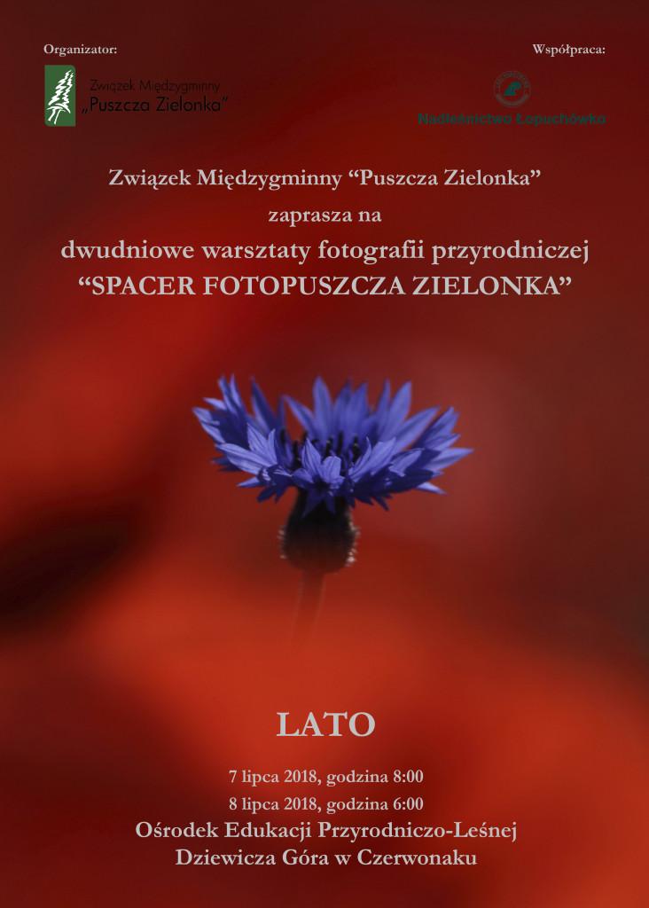 lato_plakat