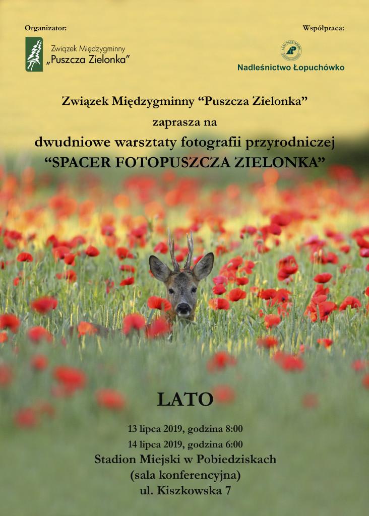 lato_plakat_2019