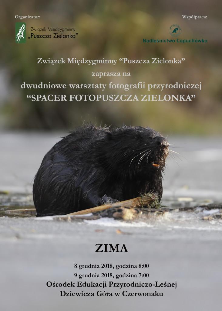 plakat_zima_foto