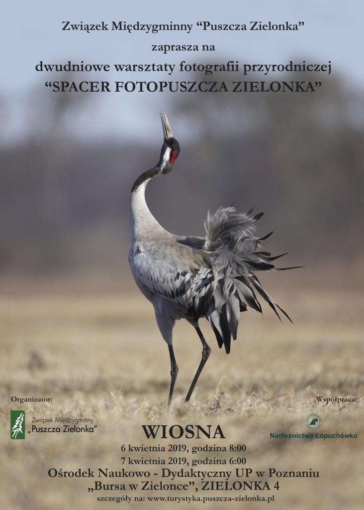 wiosna_plakat_nowy